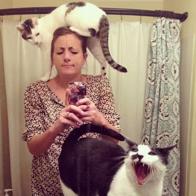 rahat-vermeyen-kediler-4
