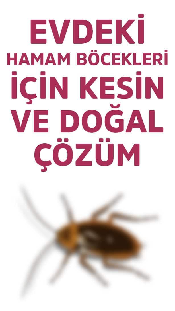 Ev yapımı böcek ilacı
