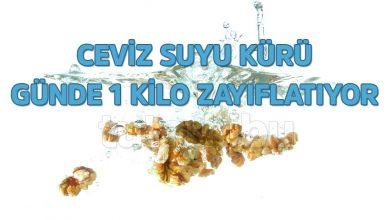 Photo of Günde 1 Kilo Verdiren Ceviz Suyu