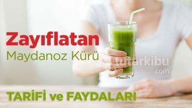 Photo of Zayıflatan Maydanoz Limon Kürü Tarifi – Faydaları